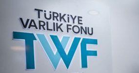 DR. ALİ TİGREL YAZDI- VARLIK FON ÜZERİNE