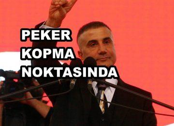 SEDAT PEKER'İN 9.VİDEOSU GERİDE KALAN 8 VİDEOYA FARK ATAR, ÇÜNKÜ..