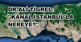 """DPT ESKİ MÜSTEŞARI DR. ALİ TİGREL SORUYOR: """"KANAL İSTANBUL'LA NEREYE?"""""""